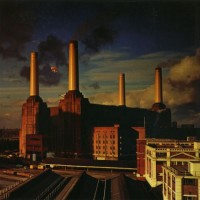 Purchase Pink Floyd - Animals