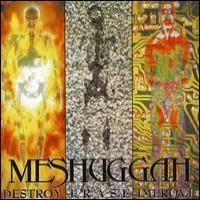 Purchase Meshuggah - Destroy Erase Improve (Reloaded 2008)