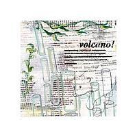 Purchase Volcano! - Paperwork