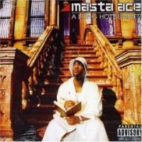 Purchase Masta Ace - A Long Hot Summer