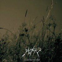 Purchase Austere - To Lay Like Old Ashes