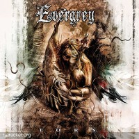 Purchase Evergrey - Torn