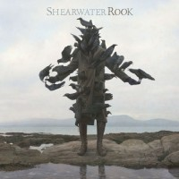 Purchase Shearwater - Rook