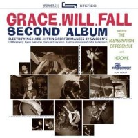 Purchase Grace Will Fall - Second Album
