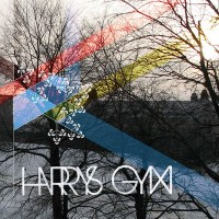 Purchase Harrys Gym - Harrys Gym