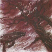Purchase Veil - Sombre