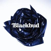 Purchase Blackbud - Blackbud