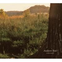 Purchase Andrew Bird - Noble Beast