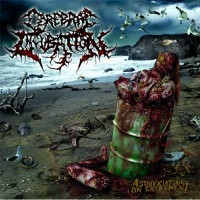 Purchase Cerebral Incubation - Asphyxiating on Excrement