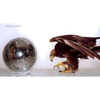 Purchase New Order - Retro: Fan