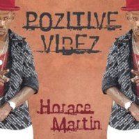 Purchase Horace Martin - Pozitive Vibez