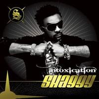 Purchase Shaggy - Intoxicaton