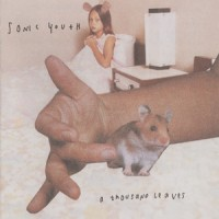 Purchase Sonic Youth - A Thousand Leaves