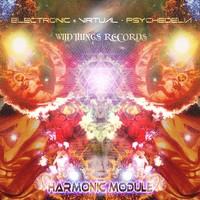 Purchase E.V.P. - Harmonic Module