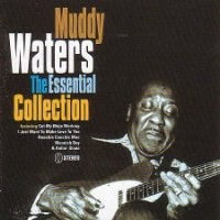 Purchase Muddy Waters - Muddy Waters the Essential Collection
