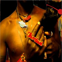 Purchase Saul Williams - The Inevitable Rise and Liberation of NiggyTardust!