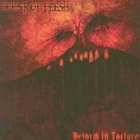 Purchase Scent Of Flesh - Deform In Torture