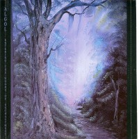 Purchase Algol - Entering The Woods Of Enchantment