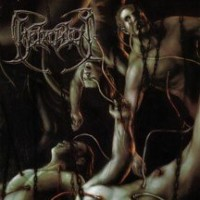 Purchase Beheaded - Recounts Of Disembodiment
