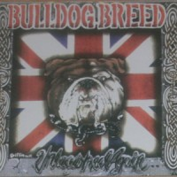 Purchase Bulldog Breed - Unleashed Again