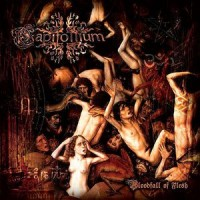 Purchase Capitollium - Bloodfall Of Flesh