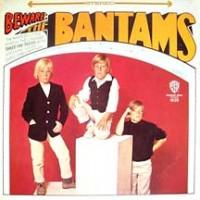Purchase Bantams - Beware