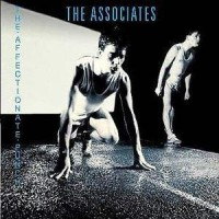 Purchase Associates - The Affectionate Punch