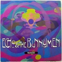 Purchase Echo & The Bunnymen - Reverberation