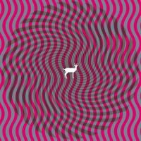 Purchase Deerhunter - Cryptograms