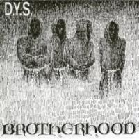 Purchase D.Y.S - Brotherhood