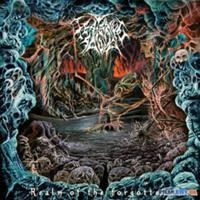 Purchase Festering Saliva - Realm Of The Forgotten