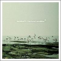 Purchase Terminal 11 - Fractured Sunshine