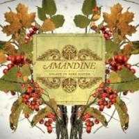 Purchase Amandine - Solace in Sore Hands