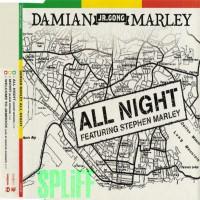 Purchase Damian Marley - All Night-CDM