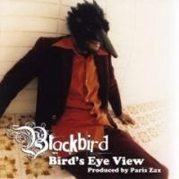 Purchase Blackbird - Bird's Eye View
