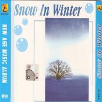 Purchase VA - Snow In Winter