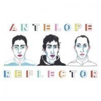 Purchase Antelope - Reflector