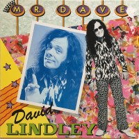 Purchase David Lindley - Mr Dave