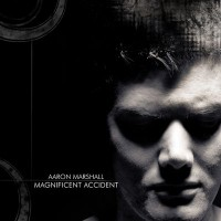Purchase Aaron Marshall - Magnificent Accident