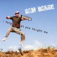 Purchase Sam Barsh - I Forgot What You Taught Me