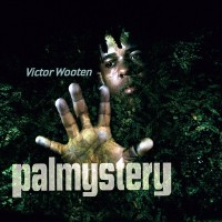 Purchase Victor Wooten - Palmystery