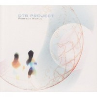 Purchase Dt8 project - Perfect World