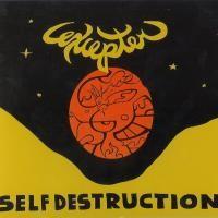 Purchase Excepter - Self Destruction