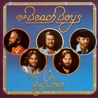 Purchase The Beach Boys - 15 Big Ones