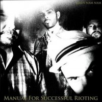 Purchase Birdy Nam Nam - Manual For Successful Rioting