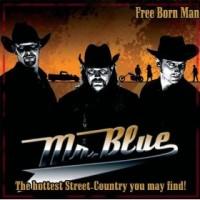 Purchase Mr. Blue - Free Born Man