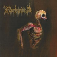 Purchase Nethervoid - Sirens Of The Blistering Light