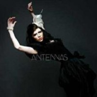 Purchase Antennas - Feeling Feeline Tonight