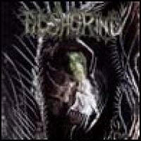 Purchase Fleshgrind - The Seeds of Abysmal Torment