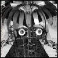 Purchase Mephista - Entomological Reflections